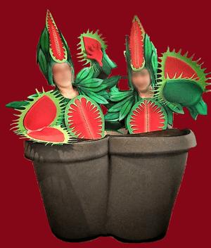 disfraz de planta carnivora