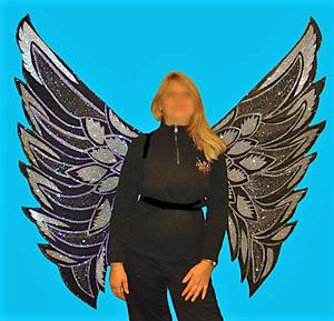 disfraz de alas